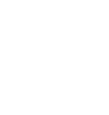 ikona-zaric